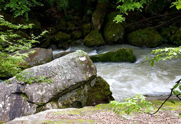 Река Бебреш