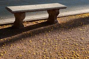 Пейка в Буенос Айрес (Буенос Айрес и още от южноамериканската одисея)