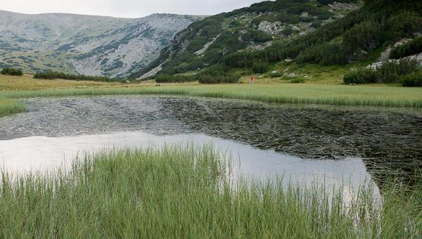 Едно от Манастирските езера