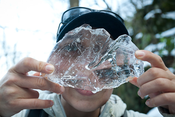 Витошки лед