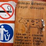 Кравешки барометър